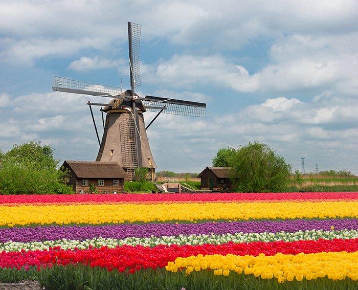 top-Netherlands-app-development-companies